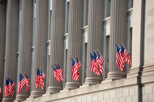Government「US flag decorations between columns for Obama's swearing in」:スマホ壁紙(15)