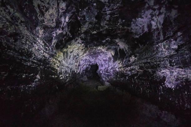 Kaumana Caves Park,Hilo,Big Island,Hawaii,USA:スマホ壁紙(壁紙.com)