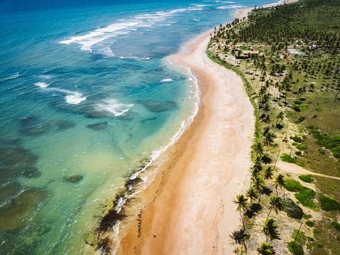 Northeast「Drone view on coastline with Palm beach in Bahia, Brazil」:スマホ壁紙(3)