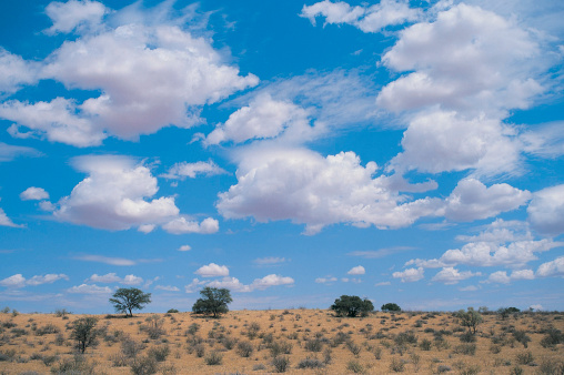Kalahari Desert「Clouds over Kalahari Gemsbok National Park」:スマホ壁紙(10)