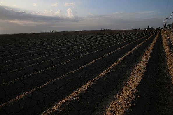 Agricultural Field「California's Central Valley Heavily Impacted By Severe Drought」:写真・画像(10)[壁紙.com]