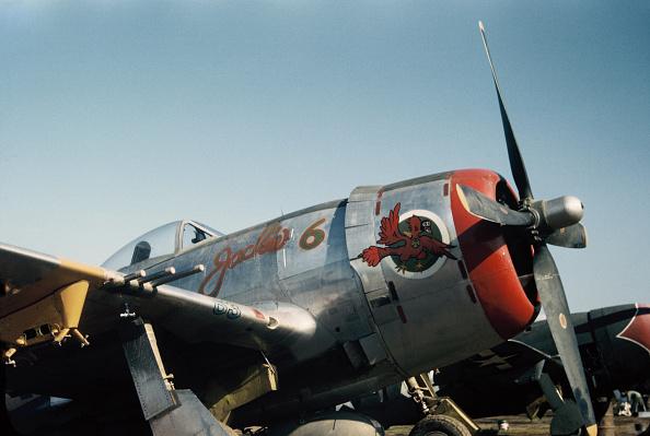 カラー画像「WW2 Fighter Plane Nose Art」:写真・画像(11)[壁紙.com]