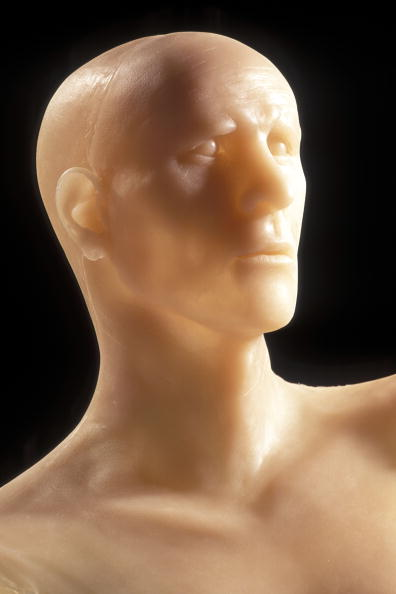 Silicon「FRA: Otzi The Iceman」:写真・画像(18)[壁紙.com]