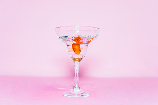 Carp「Goldfish swimming in a coupe glass」:スマホ壁紙(17)