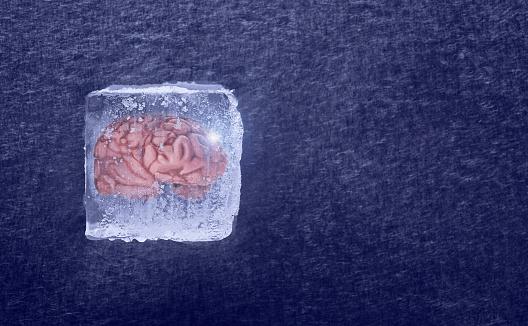 Specimen Holder「Brain frozen in ice cube」:スマホ壁紙(4)