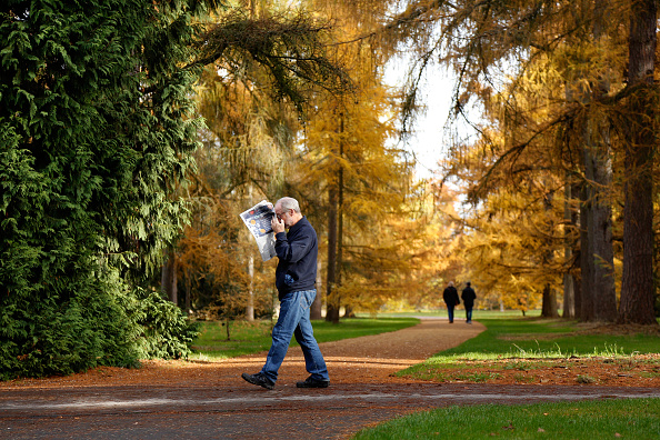 Grove「Beautiful autumn colours are seen across the Royal Botanical Gardens」:写真・画像(11)[壁紙.com]