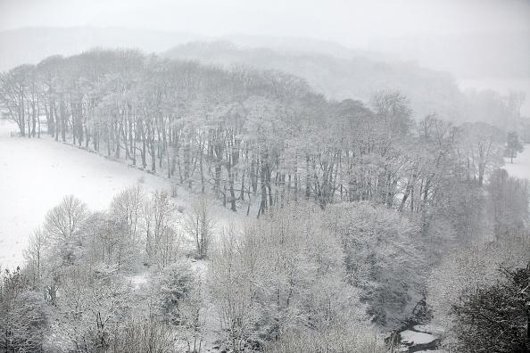 風景(季節別)「Snow Hits The UK」:写真・画像(10)[壁紙.com]