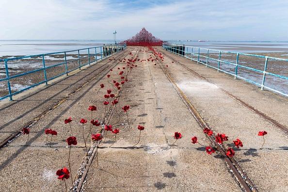 波「Iconic Poppy Sculpture Opens At Shoeburyness, Southend-on-Sea」:写真・画像(16)[壁紙.com]