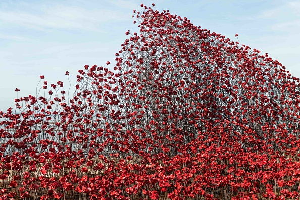 波「Iconic Poppy Sculpture Opens At Shoeburyness, Southend-on-Sea」:写真・画像(17)[壁紙.com]