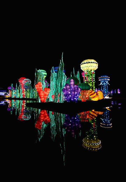 Francois Nel「Dubai Garden Glow」:写真・画像(11)[壁紙.com]