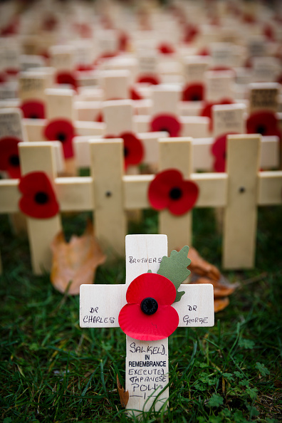 Tristan Fewings「Duke Of Edinburgh And Prince Harry Visit The Fields Of Remembrance」:写真・画像(10)[壁紙.com]