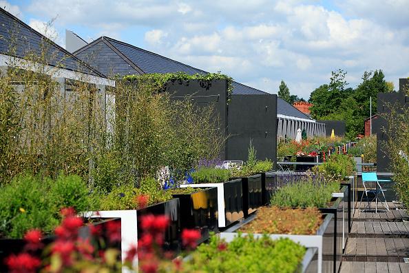 Environmental Conservation「Chimney Pot Park Wins Top Design Award」:写真・画像(4)[壁紙.com]