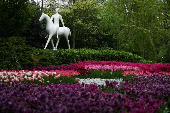 Keukenhof Gardens「Keukenhof Gardens」:写真・画像(7)[壁紙.com]