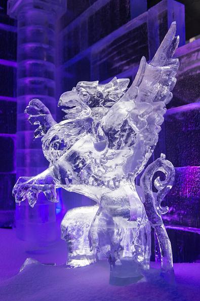 Ian Gavan「Magical Ice Kingdom - Photocall」:写真・画像(8)[壁紙.com]