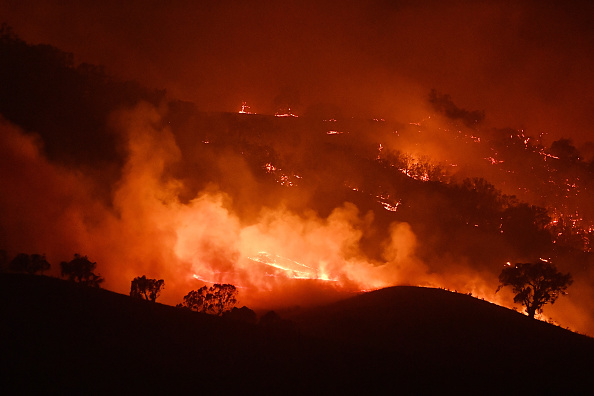 Forest Fire「NSW On Severe Bushfire Alert As Weather Conditions Worsen」:写真・画像(2)[壁紙.com]