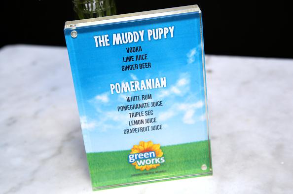 Rachel Murray「Green Works Muddy Puppies Launch Party」:写真・画像(9)[壁紙.com]