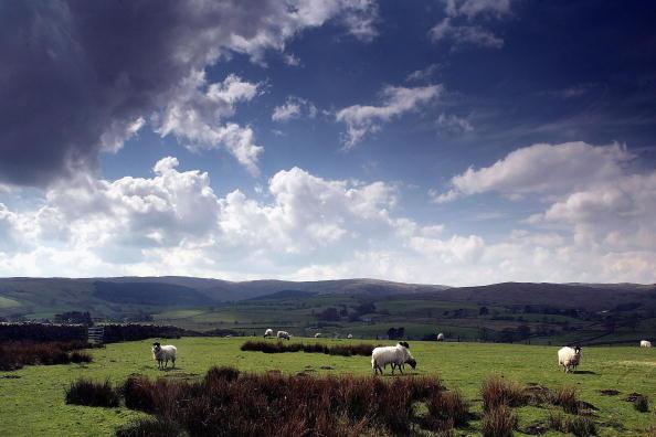 Farm「Wind Farms Battle Against Climate Change」:写真・画像(5)[壁紙.com]