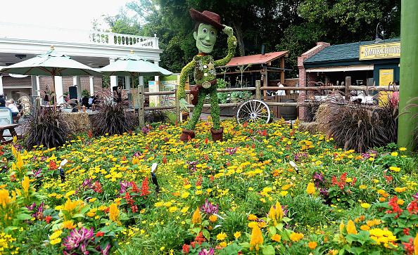 Epcot「Epcot International Flower And Garden Festival」:写真・画像(17)[壁紙.com]