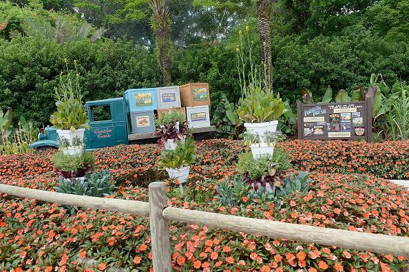 Epcot「Epcot International Flower And Garden Festival」:写真・画像(18)[壁紙.com]