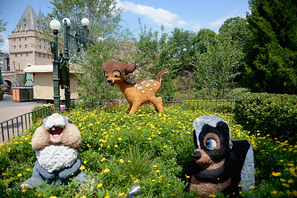 Epcot「Epcot International Flower And Garden Festival」:写真・画像(16)[壁紙.com]