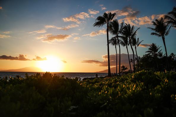 Maui「2019 Maui Film Festival - Day 1」:写真・画像(3)[壁紙.com]