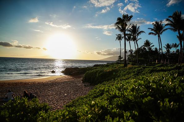 Maui「2019 Maui Film Festival - Day 1」:写真・画像(14)[壁紙.com]