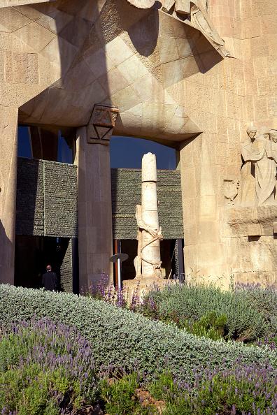 Sagrada Familia - Barcelona「General View Sagrada Familia Cathedral」:写真・画像(10)[壁紙.com]
