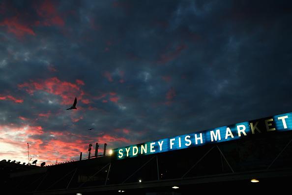 シドニー「Easter Auction At Sydney Fish Market」:写真・画像(12)[壁紙.com]