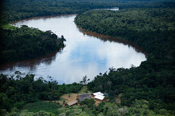 Environment「General Views of the Brazilian Amazon Region Close to the Venezuelan Border」:写真・画像(17)[壁紙.com]