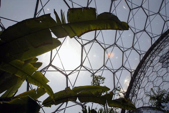 Architectural Feature「The Eden Project」:写真・画像(8)[壁紙.com]