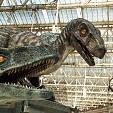 【ジュラシック】恐竜の画像集【図鑑】:まとめ