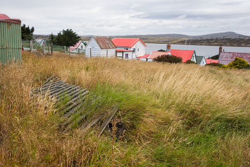 Port Stanley - Falkland Islands「Houses on the beach」:スマホ壁紙(13)