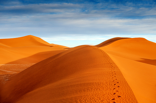 Shadow「Beautiful  Dunes near Mhamid,Zagora,  Morocco,North Africa」:スマホ壁紙(3)