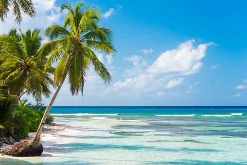 Turquoise Background「Beautiful Dominican Republic」:スマホ壁紙(18)