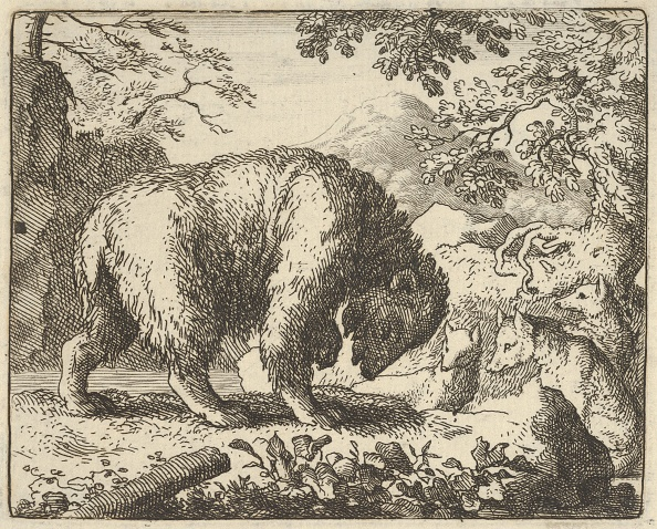 Fairy Tale「Renard Promises The Bear To Take Him To A Place Where He Will Find Honey」:写真・画像(17)[壁紙.com]