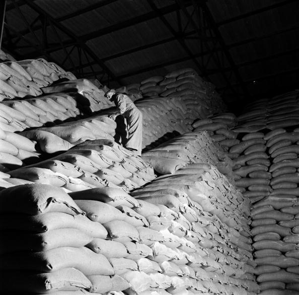 Sack「Sugar Warehouse」:写真・画像(9)[壁紙.com]