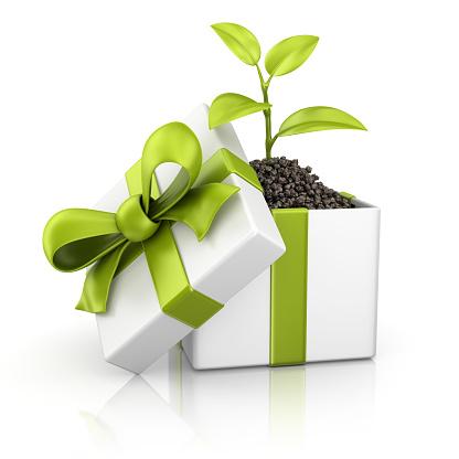 成長「eco のギフトボックス」:スマホ壁紙(11)