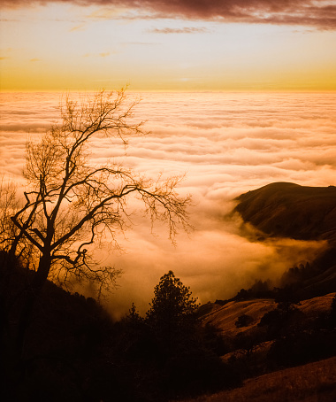 Spirituality「Big Sur's fog covers the surface of the Pacific Ocean at sunset」:スマホ壁紙(5)