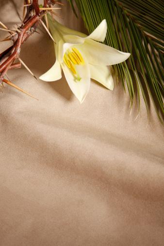 Crown - Headwear「Palm Sunday, Good Friday and Easter」:スマホ壁紙(17)