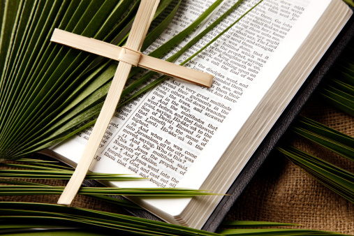 Frond「Palm Sunday Bible Passage and Symbols」:スマホ壁紙(5)