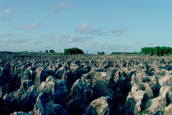 Copy Space「Phosphate Fields, Nauru, South Pacific」:写真・画像(19)[壁紙.com]