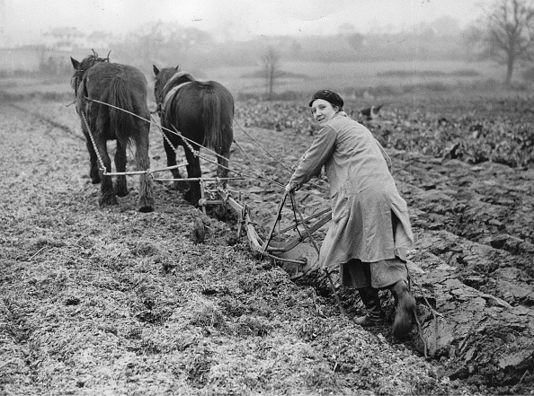 Farm「Woman Plowing With Horses A Field」:写真・画像(4)[壁紙.com]