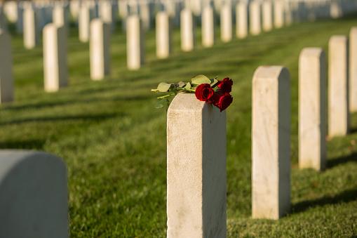 Richmond - Virginia「Roses on cemetery gravestone」:スマホ壁紙(10)