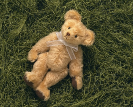ぬいぐるみ「Closed Up Image of a Teddy Bear Lying in a Pile of Grass, High Angle View」:スマホ壁紙(6)