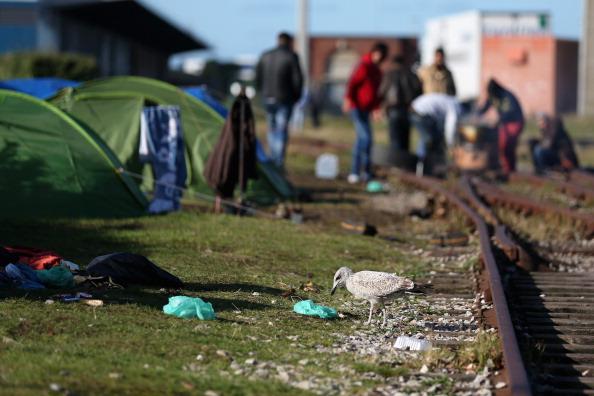 Sangatte「Illegal Immigrants In Calais」:写真・画像(19)[壁紙.com]