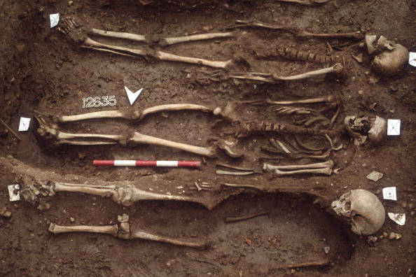 Place of Burial「The Excavation Of The Black Death Cemetery At The Royal Mint Site」:写真・画像(15)[壁紙.com]