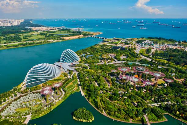 Singapore, Garden By the bay, Supertree Grove:スマホ壁紙(壁紙.com)