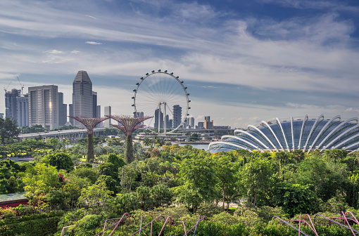 Development「Singapore, Gardens By The Bay」:スマホ壁紙(6)