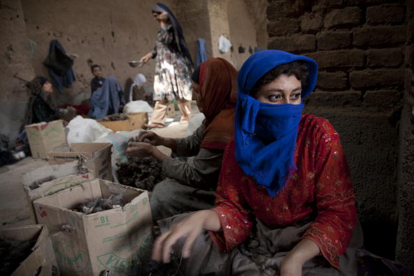 Herat「Workers Exposed to Health Risks in Fur and Wool Factories in Afghanistan」:写真・画像(6)[壁紙.com]