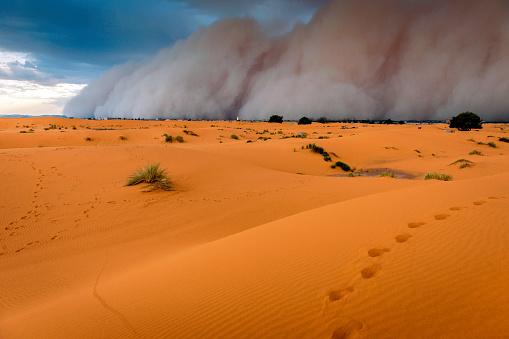 Approaching「Sandstorm Approaching Merzouga Settlement,in Erg Chebbi Desert Morocco, North Africa」:スマホ壁紙(2)
